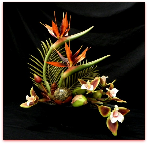bird-of-paradise-and-orchid-arrangementpic monkey 2